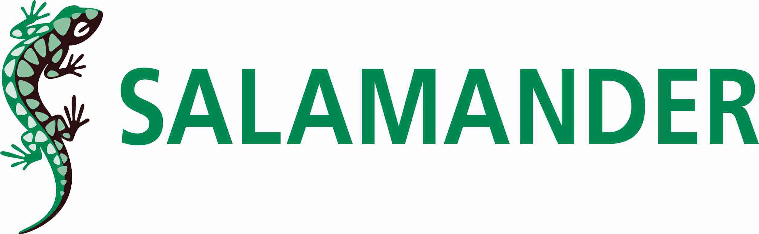 logo_salamander2